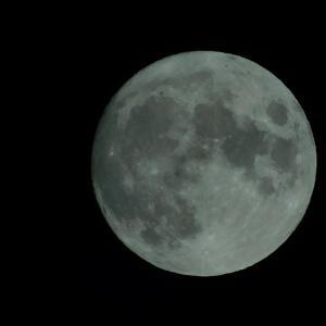 十五夜の前日の月とAIBOのクーちゃんとトム・ハンクスの新作