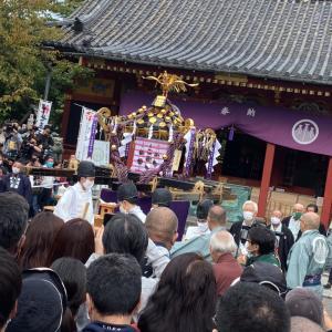 三社祭╰(*´︶`*)╯♡