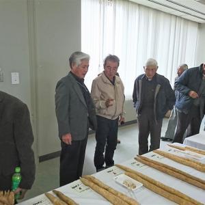 【吉川タイムズOnline:速報】第27回新潟県自然薯品評会が開催~JAえちご上越自然薯部会が好成績で表彰される