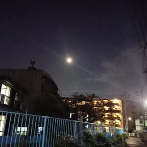 またまた月