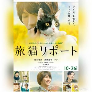 見たかった映画を見た「旅猫リポート」