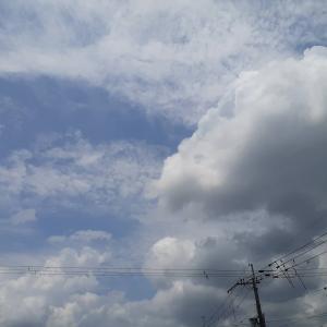 ★本日13時、お空にかえりました。