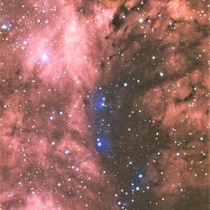 はくちょう座の巨大散光星雲域