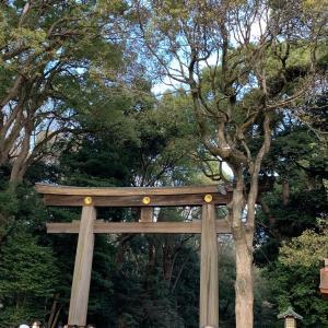 初詣は、毎年恒例の明治神宮へ!