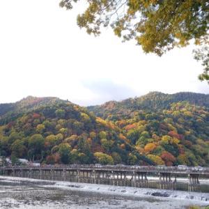 京都の紅葉 ずらし観光