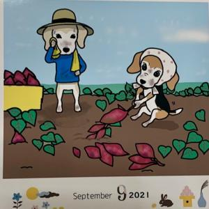 9月のうちの子カレンダー