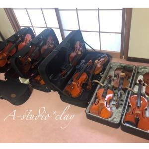 バイオリン購入〜っ♪