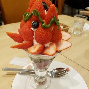 〔新宿〕久しぶりに果実園リーベルでフルーツを堪能してきました~!