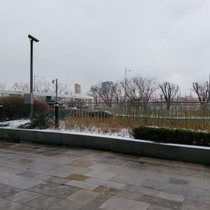 さて、寒すぎるソウルから帰ります