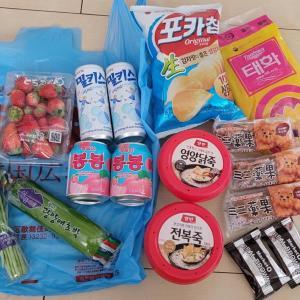 新大久保の韓国広場で買った韓国食材など