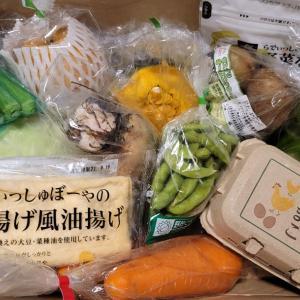 [らでぃっしゅぼーや]のふぞろい野菜セット届きました!