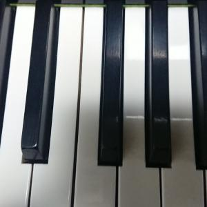 弾かない鍵盤に、ピラニア(人食いのお魚)が…