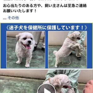 NPOイヌネコライフネットワークえひめ FB 愛媛県松山市