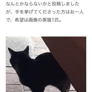 """""""ケアマネージャーさんからの相談案件のその後"""""""