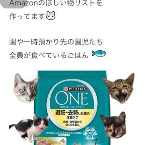 """""""保護猫へのご支援お願いします<(_ _)>"""""""