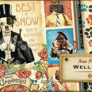 NEW! Graphic 45 Well Groomed!