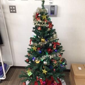 探偵事務所にクリスマスツリーを飾る
