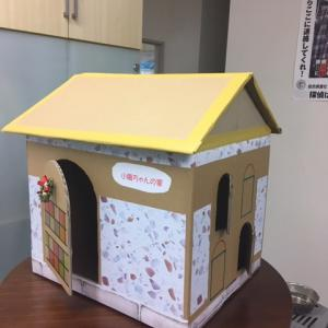 段ボールで猫の家を作る