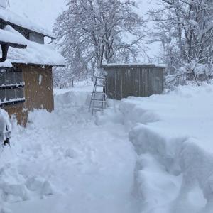 豪雪地帯の実家