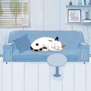 猫のトイレ場所のDIY