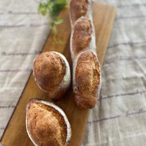 ハード系パン2種