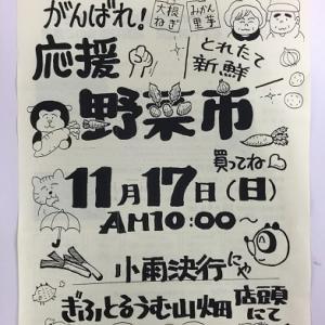人気の野菜市 ~ 11月 17日 (日) に開催します…♪♪