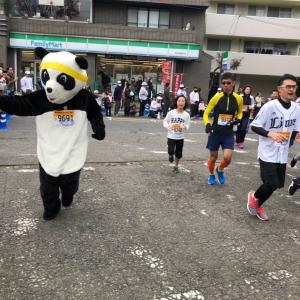 さあ、ラッキーパンダ、所沢シティマラソン大会に出場です…☆彡