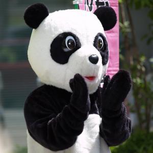 ラッキーパンダ・ネットショップ開店です...♪♪