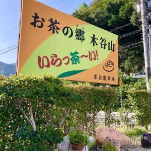 【今日のおやつ】人気の抹茶パフェでやらかしちゃったぁ〜。