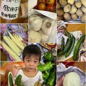 弟が育てた野菜達♡