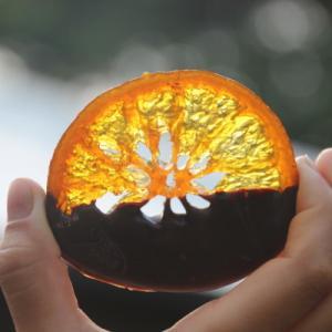 柑橘類のシーズン