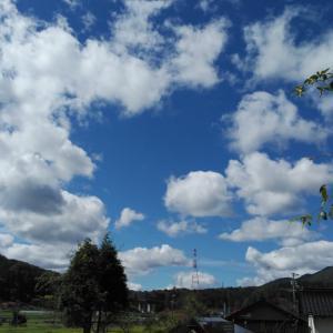のんちゃん 雲に乗る♬