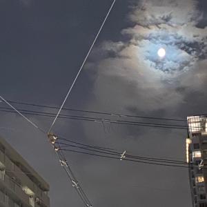 日食で夏至で新月の次は日食で満月からの七夕からドラゴンげーとへ