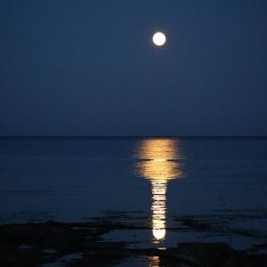 9/2 2:22【2】並びの魚座満月
