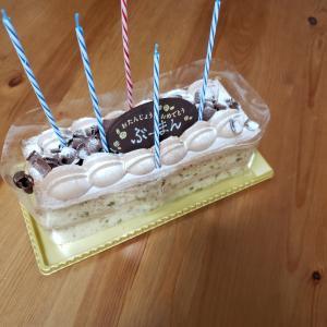 だんなくん誕生日