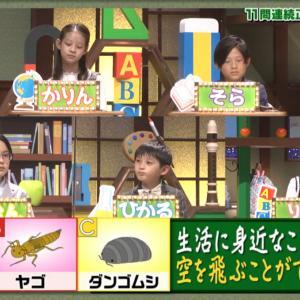 「クイズ!あなたは小学5年生より賢いの?」 助っ人小学生 かりん はるか りさ りこ ひなた かなと ひかる りおん そら 日本テレビ 動画 2021年6月