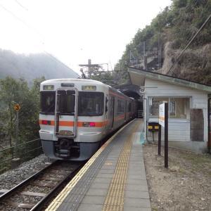 立ち寄って見た田本駅