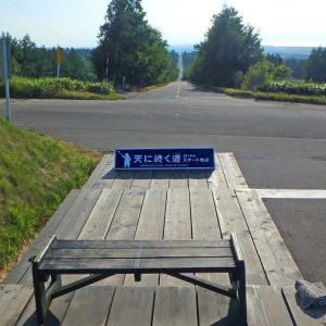 北海道ツーリング5_絶景の能取岬で小ぎつねに会って天まで続く道に行ってきた