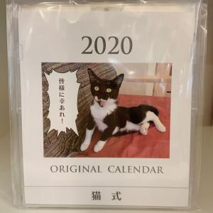 猫式カレンダー2020販売開始のお知らせ
