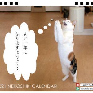 【拡散希望】2021猫式カレンダー販売開始