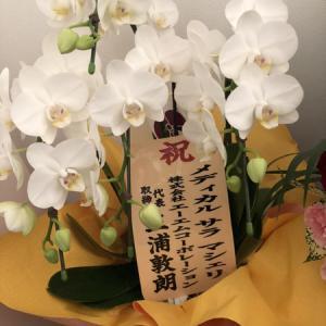 共立美容外科・歯科 広島院がOPEN致しました。 2021年3月17日 その2