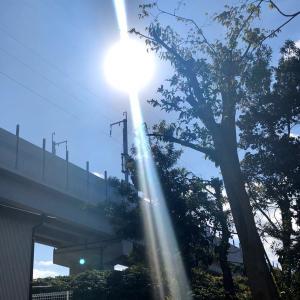 天の光りが凄いんですゲド…