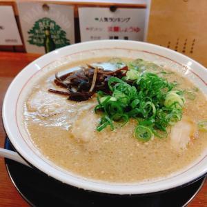 ひたむきにスープと向き合う豚骨職人が生み出す2種類の豚骨ラーメンに注目!