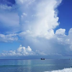 カリブ海クルーズ 5
