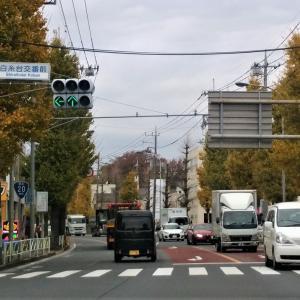 「はけ」武蔵野の代名詞 深大寺城はお休み トホホ
