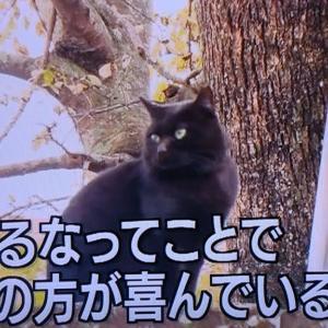 おかげさま 御恩報謝 舞鶴殿テレビ初出演