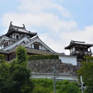 福知山城の美形 箱根駅伝の応援は法政の増田クン