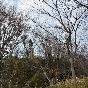 大阪の自慢 飯盛山の楠木正行像 二代目