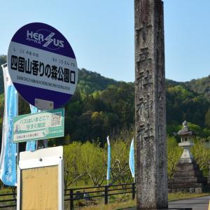 山県市の四国山とは大桑城古城山付近 紫外線装置