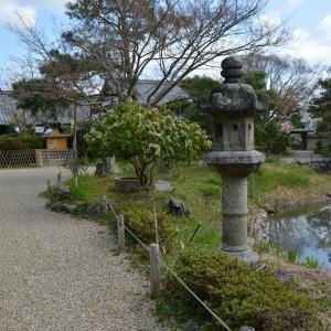 浄土庭園の池と石臼 浄土に入る前には手を洗え